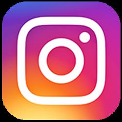 Four Lions Instagram
