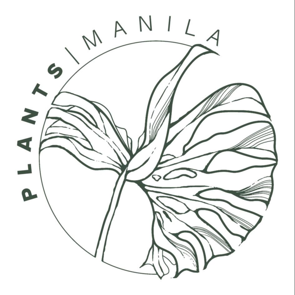 PLANTS MANILA (plantsmanila) Profile Image | Linktree