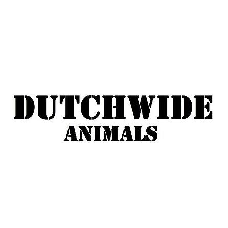 @Dutchwide.animals Profile Image | Linktree