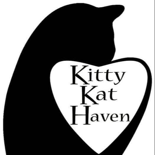 @KittyKatHaven Profile Image | Linktree