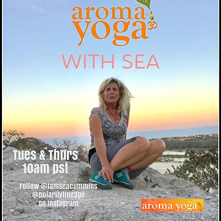 @seacummins aroma yoga® with sea zoom link Link Thumbnail | Linktree