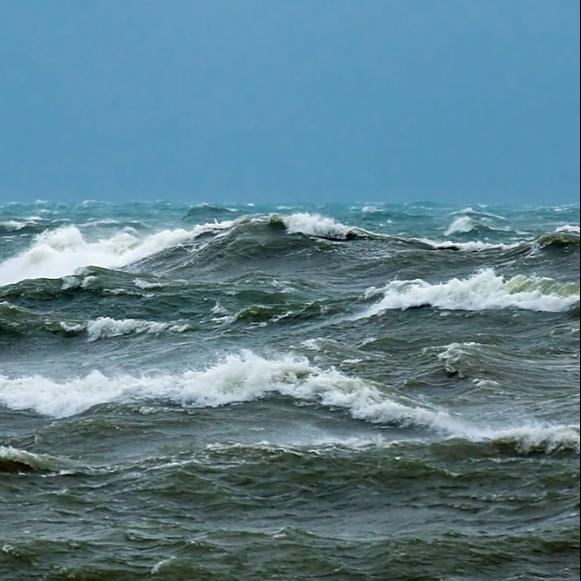 @oceana Responsible Fishing Link Thumbnail   Linktree