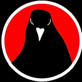 @felixrex Profile Image | Linktree