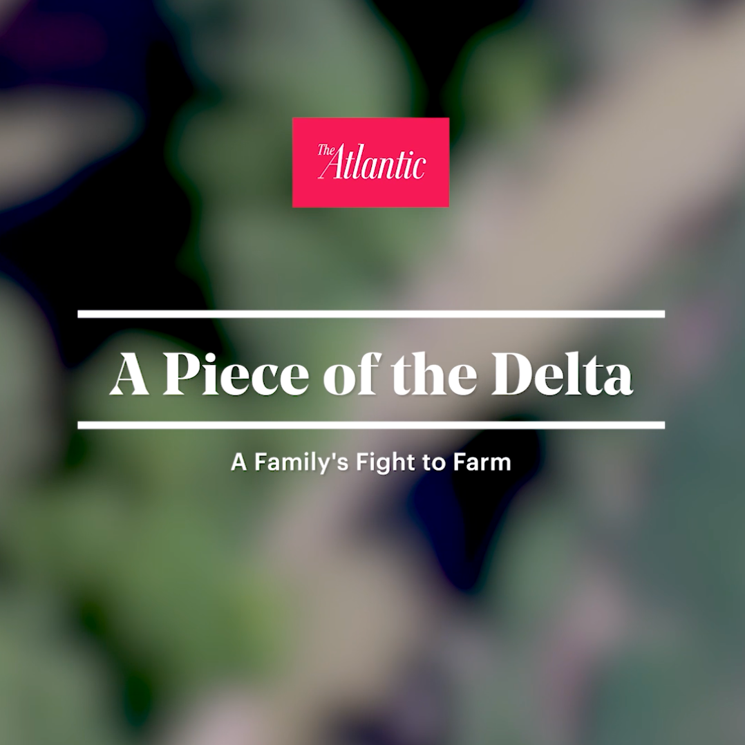 The Atlantic Watch: A Piece of the Delta: A Family's Fight to Farm Link Thumbnail | Linktree