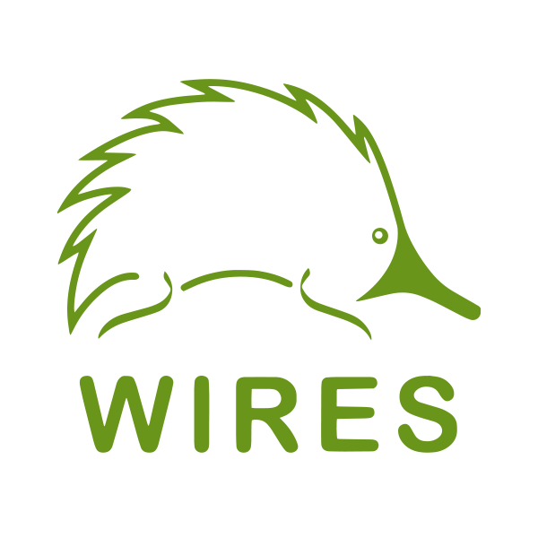 Donate to WIRES to help native animal recovery