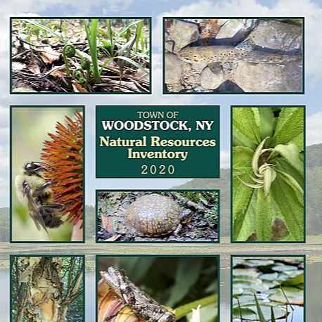 Natural Resources Inventory 2020