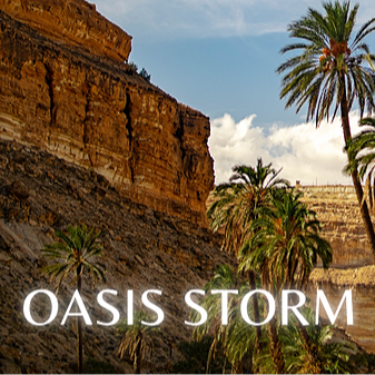 OASIS STORM, read a mystical tale of strength and survival by Bibiana Krall