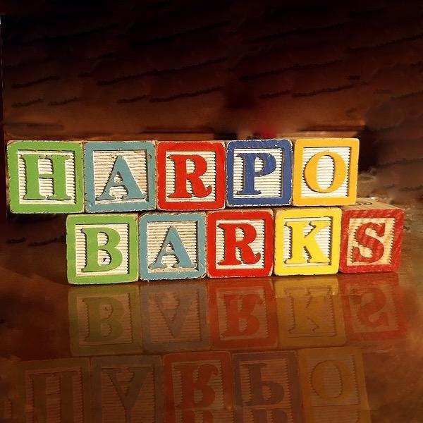 Harpo Barks        Dog Cookies