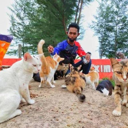 @sinar.harian Buruh belanja RM1,000 sebulan buat kucing terbiar Link Thumbnail | Linktree