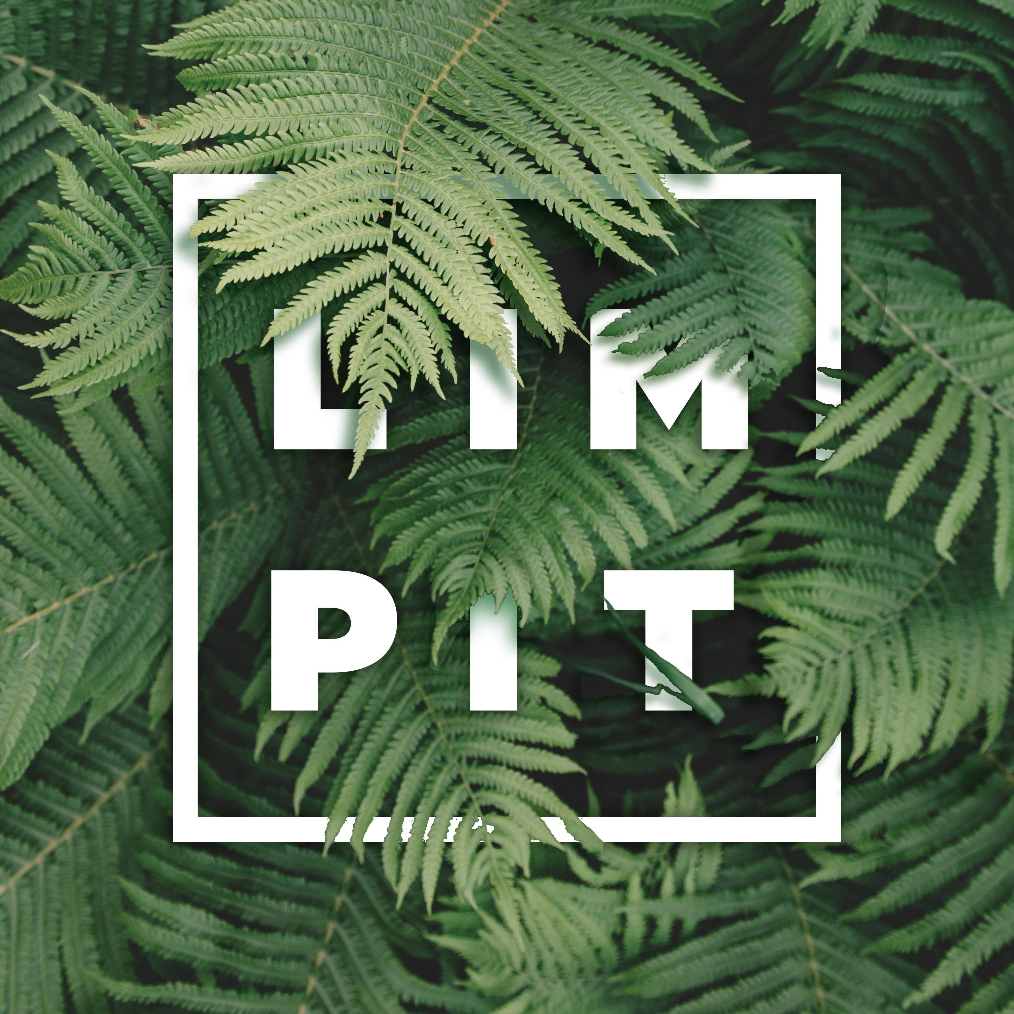 @limpit Profile Image | Linktree