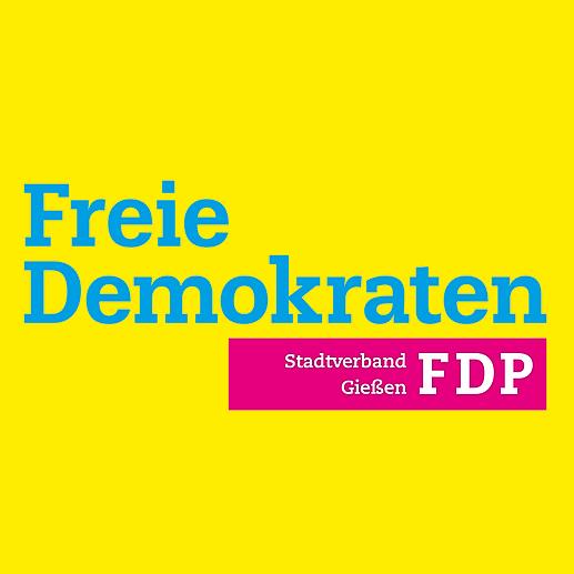 Dominik Erb FDP Stadtverband Gießen Link Thumbnail | Linktree