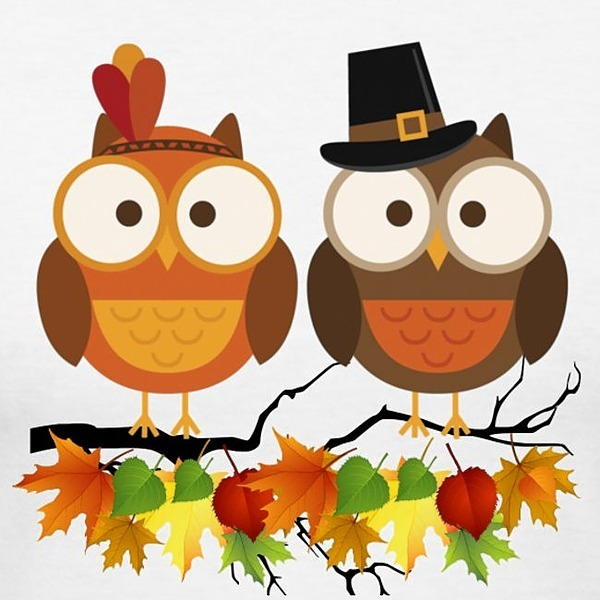 Multiplication Fact Practice - Thanksgiving Owls Pixel Art