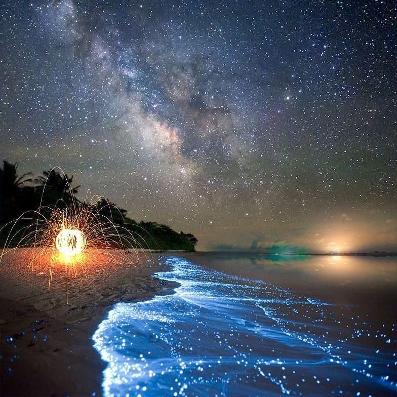 @fashionhr Prekrasna plaža koja noću sija kao zvjezdano nebo Link Thumbnail | Linktree