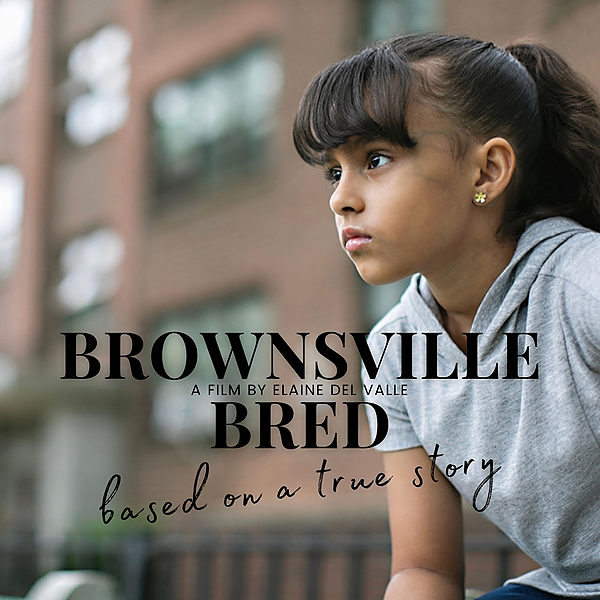"""@Delvalle SUPPORT MY FILM FUNDRAISER, """"Brownsville Bred""""  Link Thumbnail 