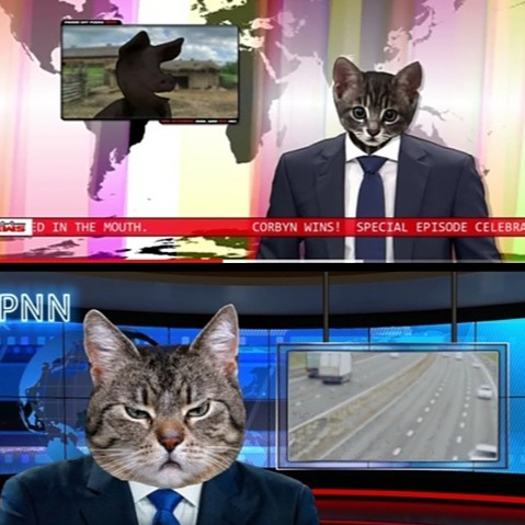 March For Rejoin PUSSY NEWS NETWORK Link Thumbnail | Linktree