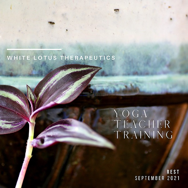 @WhiteLotusTherapeutics Yoga Teacher Training | September 12 | Rest Link Thumbnail | Linktree