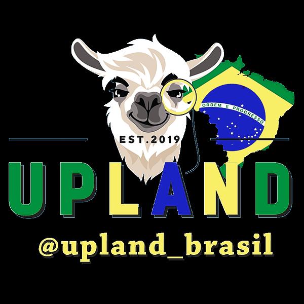 Perfil oficial brasileiro (Upland_Brasil) Profile Image   Linktree