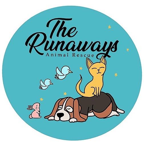 @runawaysanimalrescue Donate Now!  Link Thumbnail | Linktree