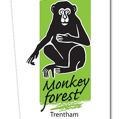 @TrenthamMonkey Profile Image | Linktree