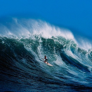 The surfers who braved sharks to ride Africa's mightiest wave