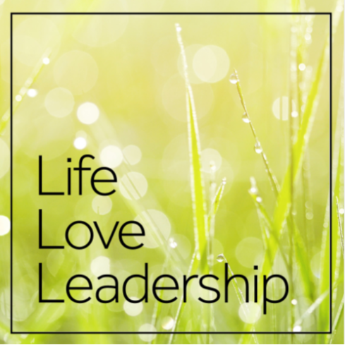 The Life Love Leadership public website with previews of all my articles and workshops.