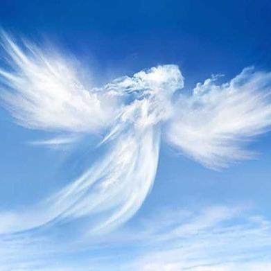 Heaven Sent (HeavenSentNPO) Profile Image   Linktree