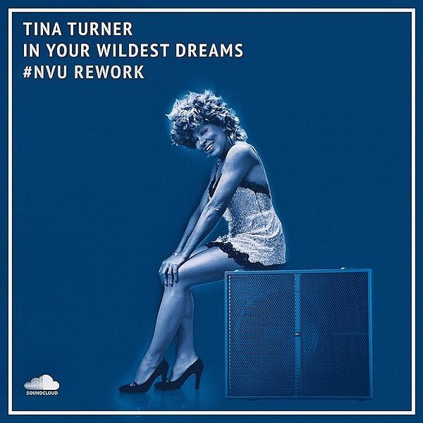 @nvumusic #NVU Rework   Tina Turner — In Your Wildest Dreams Link Thumbnail   Linktree