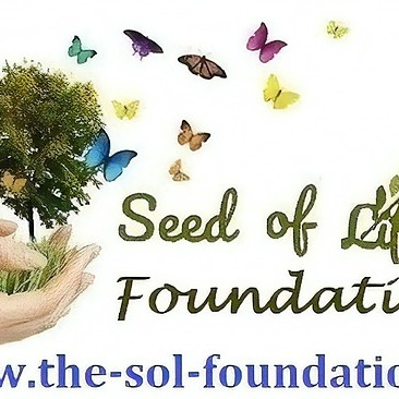The Seed of Life Foundation Website Link Thumbnail | Linktree