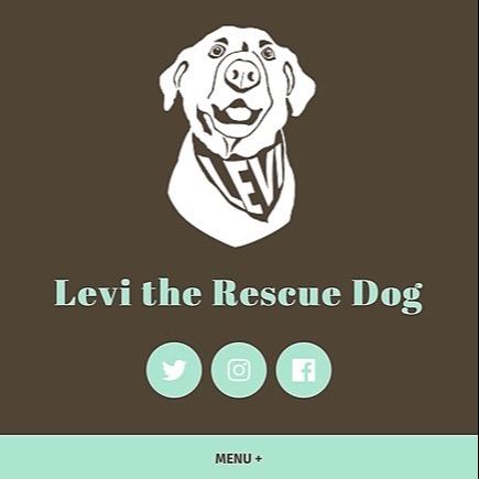 Levi Fetterman website 🐶💻 Link Thumbnail | Linktree