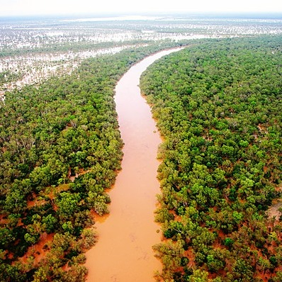 @BlakBusiness Protect Martuwarra Fitzroy River Link Thumbnail | Linktree