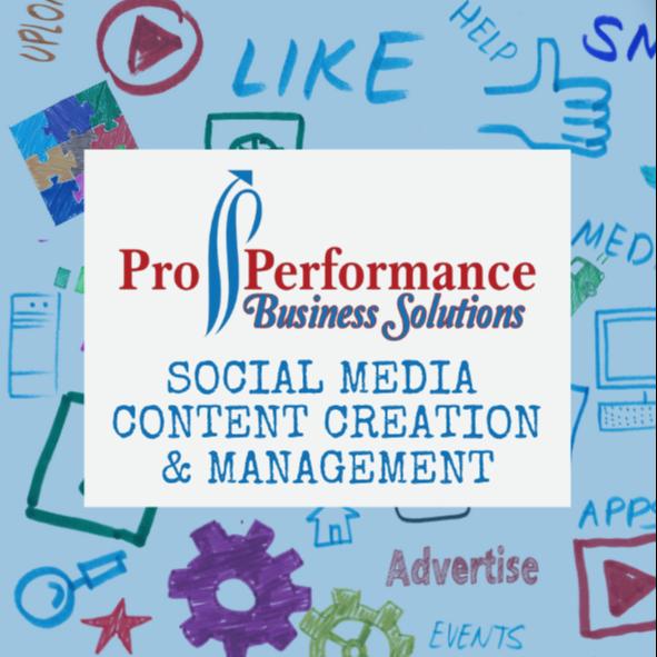 Pro Performance Biz Solutions (properformancebiz) Profile Image   Linktree