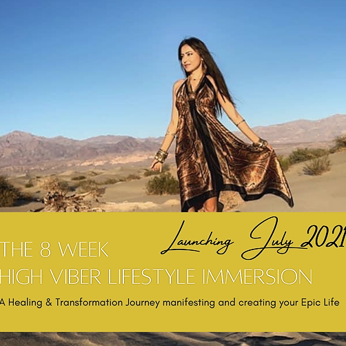 The 8 Week High Viber Lifestyle Immersion
