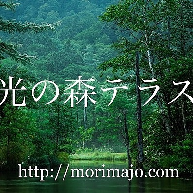 光の森テラス (makaba) Profile Image   Linktree
