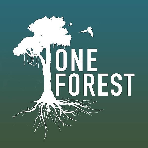 @oneforest.world Profile Image | Linktree