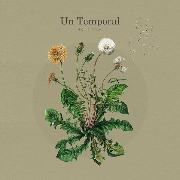 """""""Un Temporal"""" en tu plataforma favorita"""