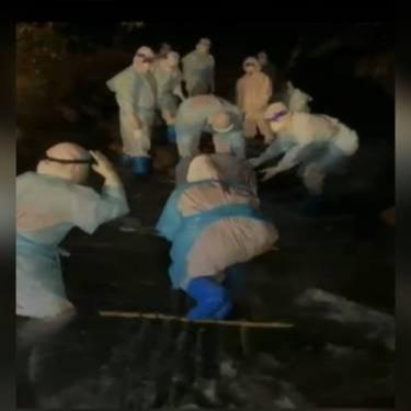 @sinar.harian Tiada pesakit Covid-19 orang asli lari ke hutan Link Thumbnail | Linktree