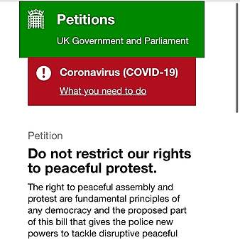 Sign: PROTECT YOUR FREEDOM TO PROTEST (UK gov)
