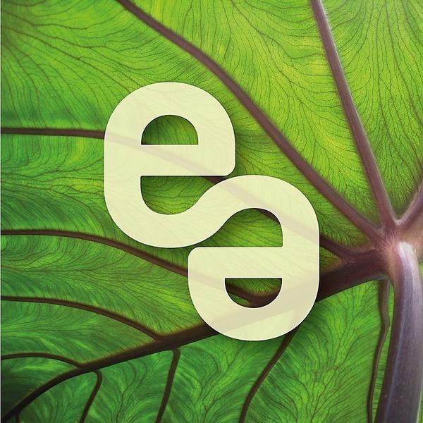 @envescompraonline2 Profile Image | Linktree