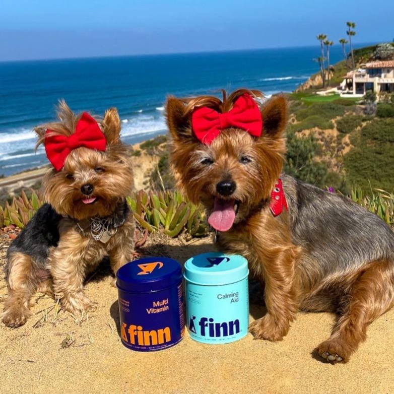 Pet Finn Dog Vitamins 20%OFF YORKIEGIRLS