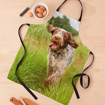 Spinone Aprons