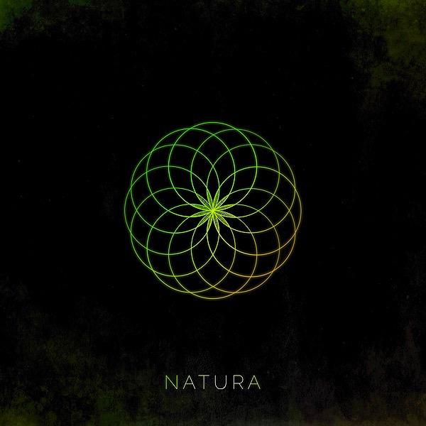 @NaturaTunes Profile Image | Linktree
