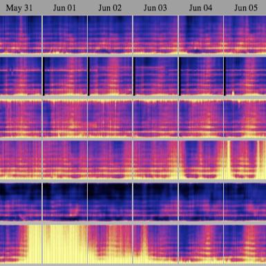 HeartMath Spectrogram Calendar
