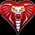 KobraQQ (Kobraqq) Profile Image | Linktree