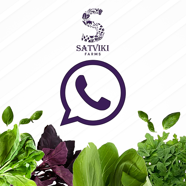 Satviki Farms For Queries, Drop us a Message on Whatsapp Link Thumbnail | Linktree