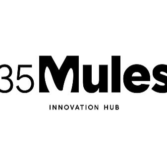 @Lisamae 35 Mules Incubator Program! $100,000k Grant! Ends Sept 10 Link Thumbnail   Linktree