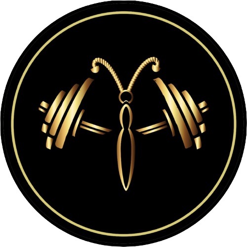 Sua Loja Fitness Passeio 360 º Link Thumbnail   Linktree