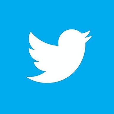 Blockchange Hodling Company Twitter Link Thumbnail | Linktree