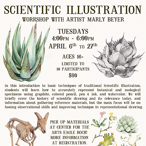 Scientific Illustration with Marly Beyer 4:00pm to 6:00pm 4/6 to 4/27