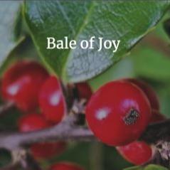 Marcelle Newbold Poem: Mid-engined 1990 Mazda Bongo (Joy, Issue 5, Failure Baler) Link Thumbnail | Linktree