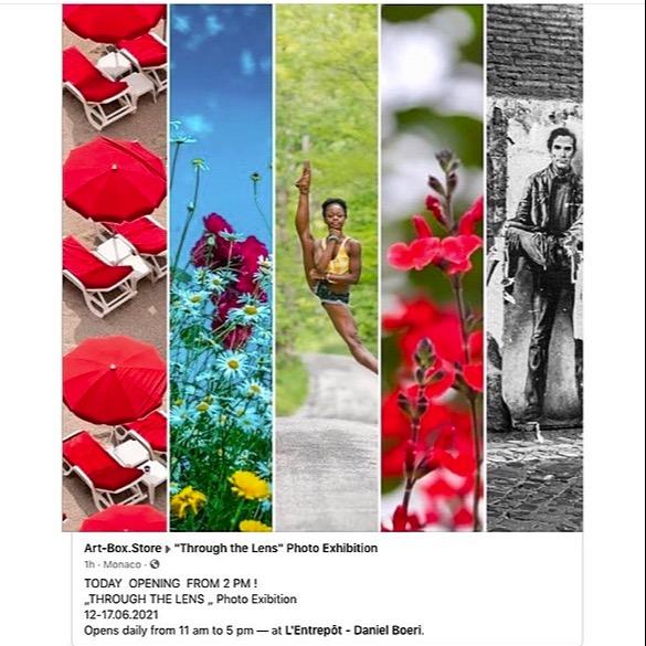 "Bolonie All female Art Exhibition "" Through the lens"" Link Thumbnail   Linktree"